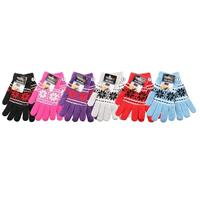 Wholesale Thermaxxx Winter Expression Glove with Touch